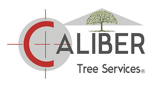 Caliber Tree Services Logo